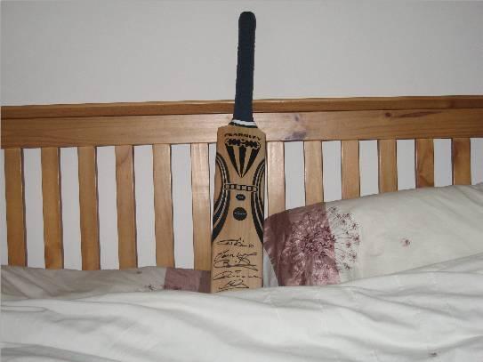 Bed bat