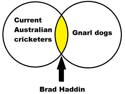 It's Brad Haddin's 'thing' - everyone's got a 'thing'