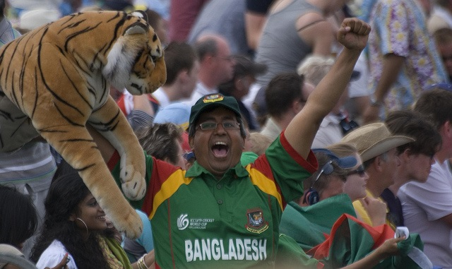 Bangladesh fan in Bristol (CC licensed by Synwell via Flickr)